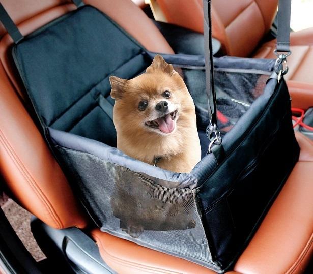 MiniTreasure Black Dog Car Seat