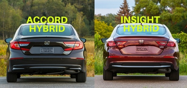Accord Vs Insight Rear
