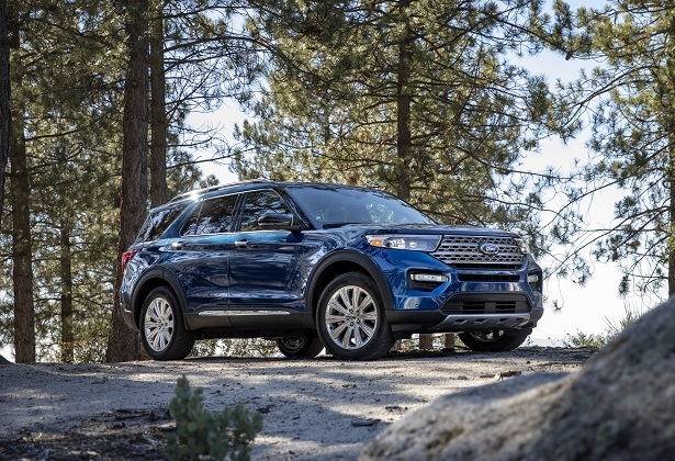 2020 ford explorer limited trees